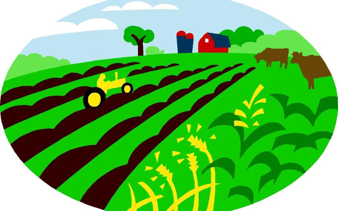 Forum-débat samedi 16 juin à 13h30′ à Lavoir (Héron) : agriculture, alimentation & biodiversité dans nos communes